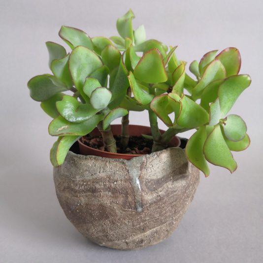 stoneware planter rocky shore